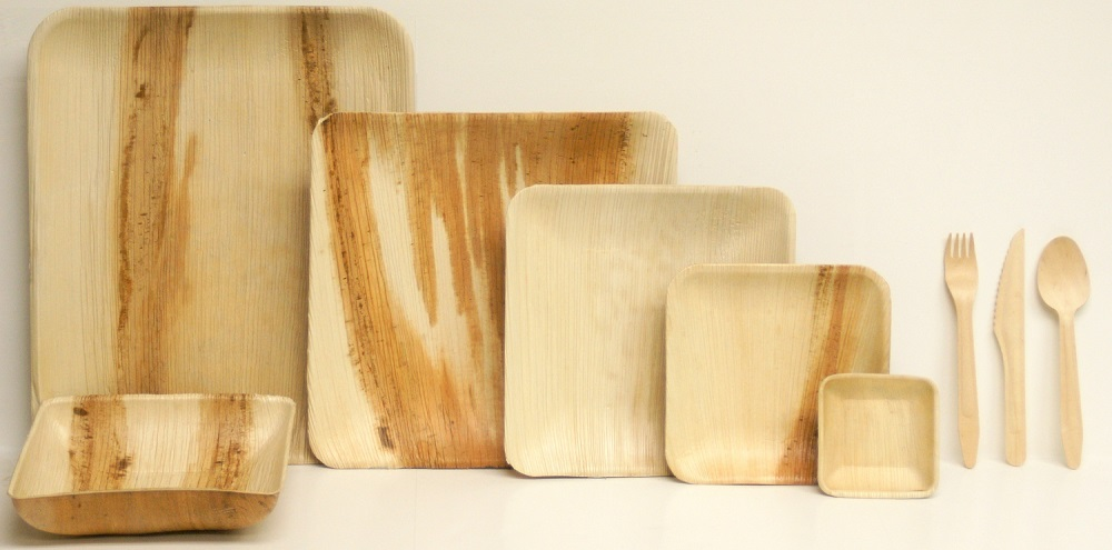 Palm Leaf Plates - Square Collection